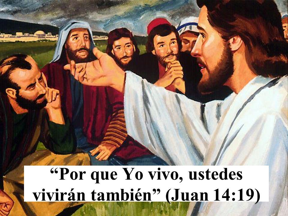 Por que Yo vivo, ustedes vivirán también (Juan 14:19)