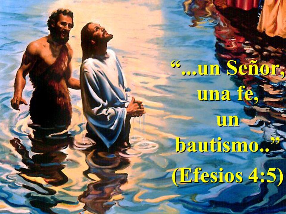 ...un Señor, una fe, un bautismo.. (Efesios 4:5)...un Señor, una fe, un bautismo.. (Efesios 4:5)