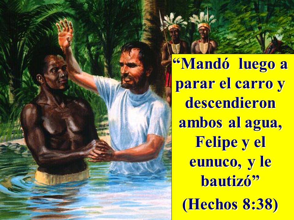 Mandó luego a parar el carro y descendieron ambos al agua, Felipe y el eunuco, y le bautizó (Hechos 8:38) Mandó luego a parar el carro y descendieron