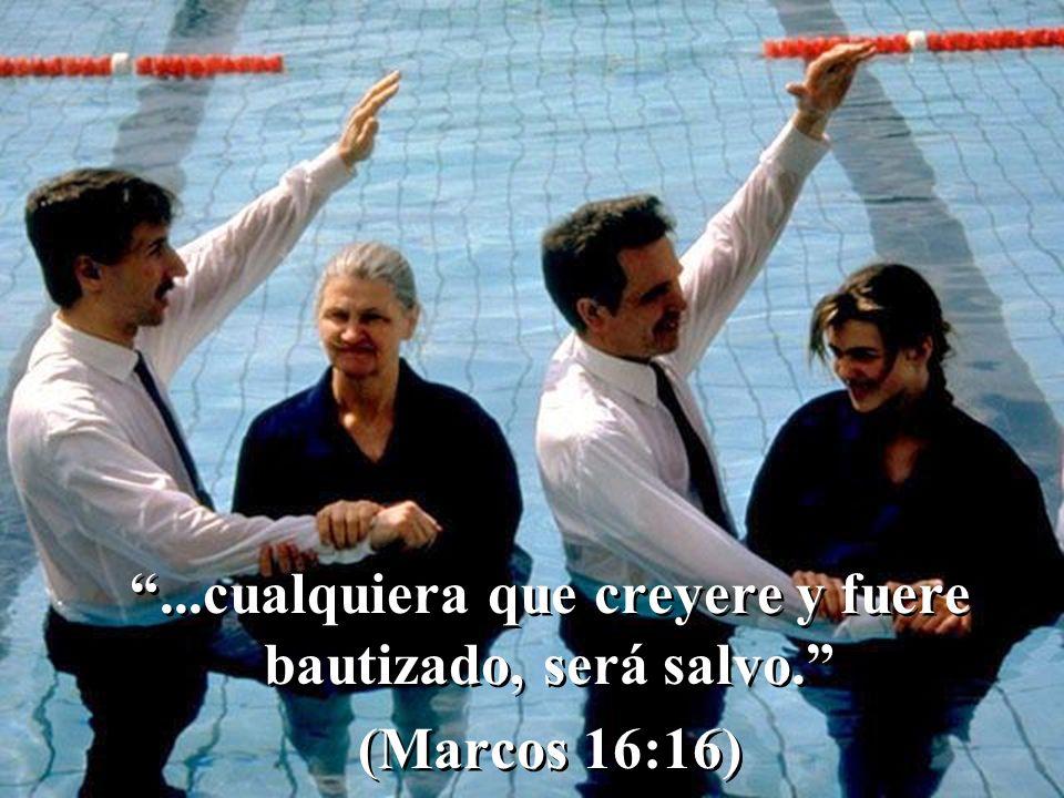 ...cualquiera que creyere y fuere bautizado, será salvo. (Marcos 16:16)...cualquiera que creyere y fuere bautizado, será salvo. (Marcos 16:16)