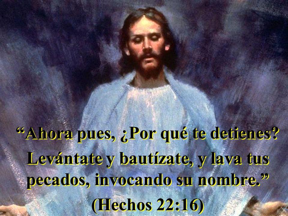Ahora pues, ¿Por qué te detienes? Levántate y bautízate, y lava tus pecados, invocando su nombre. (Hechos 22:16) Ahora pues, ¿Por qué te detienes? Lev