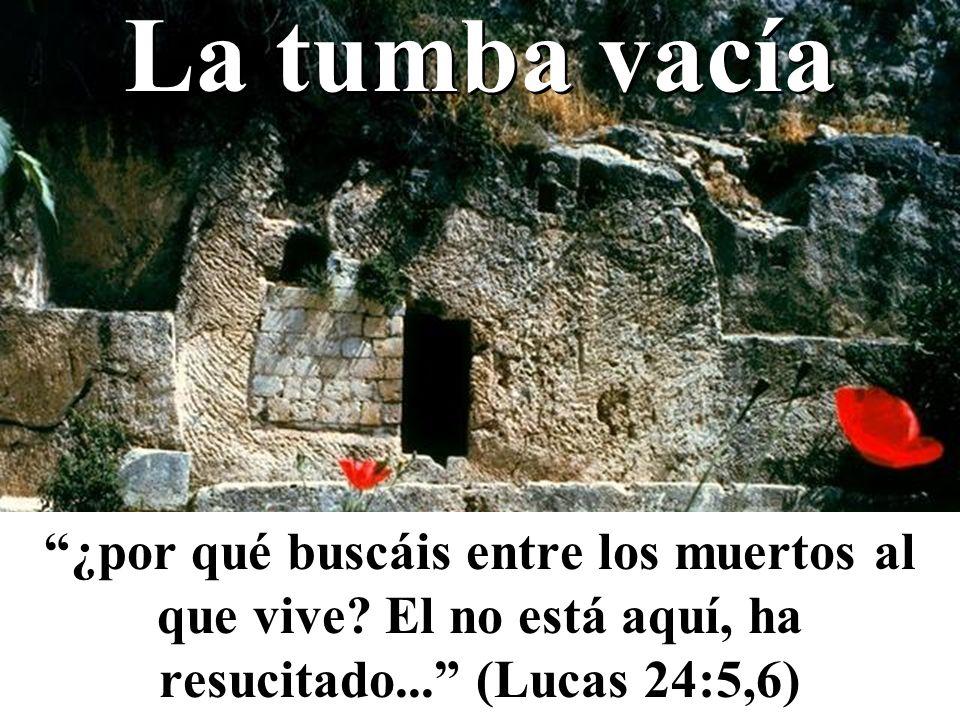 La tumba vacía ¿por qué buscáis entre los muertos al que vive? El no está aquí, ha resucitado... (Lucas 24:5,6)