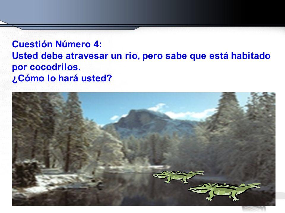Cuestión Número 4: Usted debe atravesar un rio, pero sabe que está habitado por cocodrilos. ¿Cómo lo hará usted?