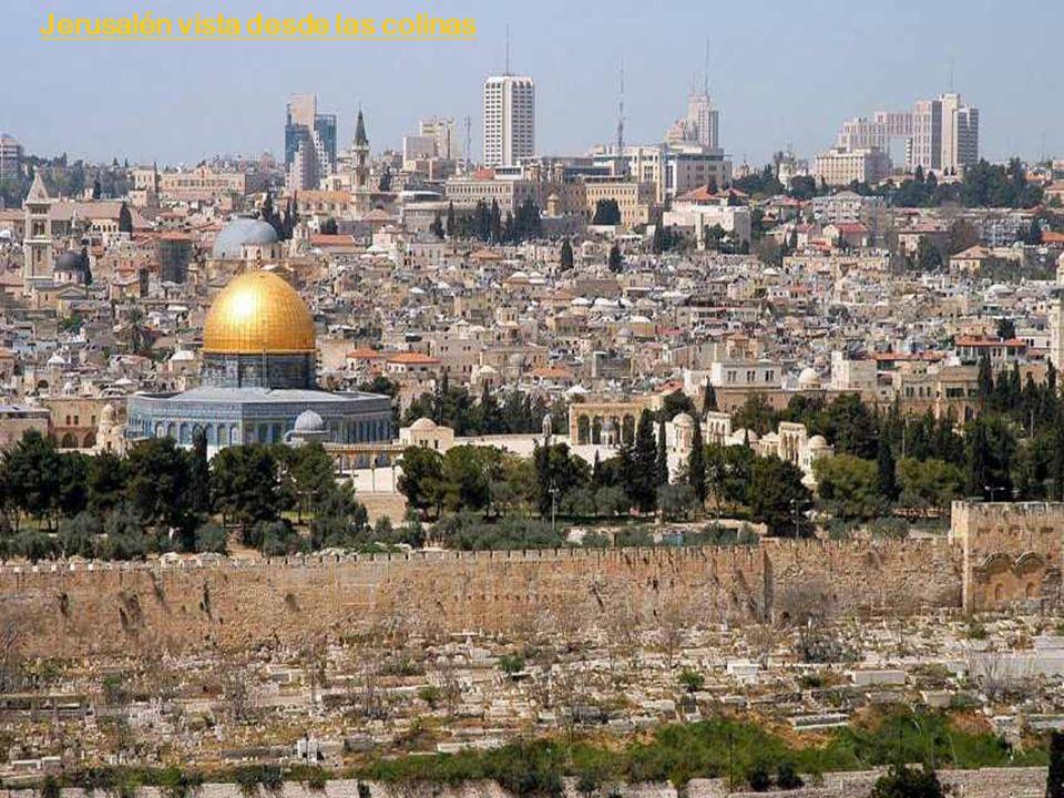Jerusalén vista desde las colinas