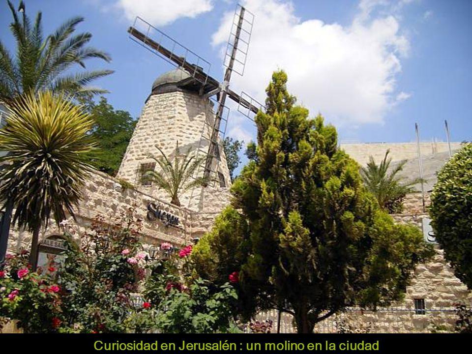 Comedor marroquí Jerusalén