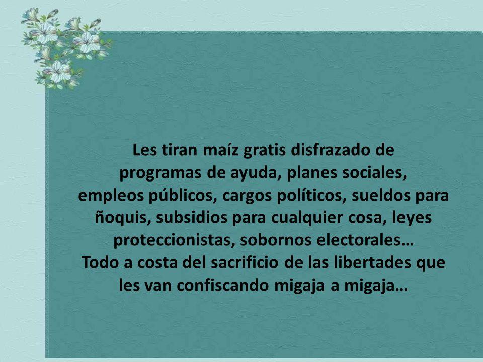 Uds. los uruguayos no se dan cuenta que estos gobiernos populares y demagógicos que tienen, proceden de la misma manera que yo con los chanchos…