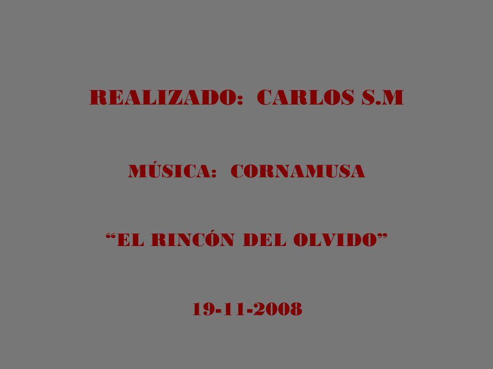 REALIZADO: CARLOS S.M MÚSICA: CORNAMUSA EL RINCÓN DEL OLVIDO 19-11-2008