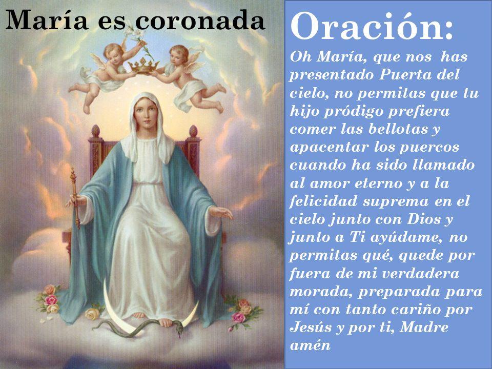 Oración: Oh María, que nos has presentado Puerta del cielo, no permitas que tu hijo pródigo prefiera comer las bellotas y apacentar los puercos cuando