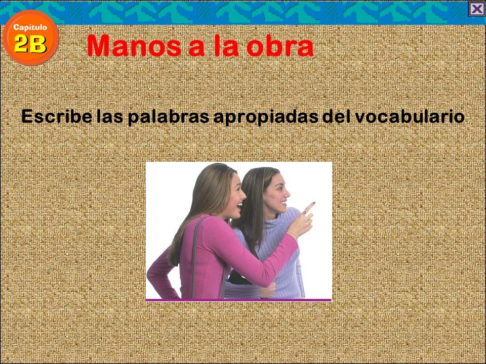 Escribe las palabras apropiadas del vocabulario Manos a la obra