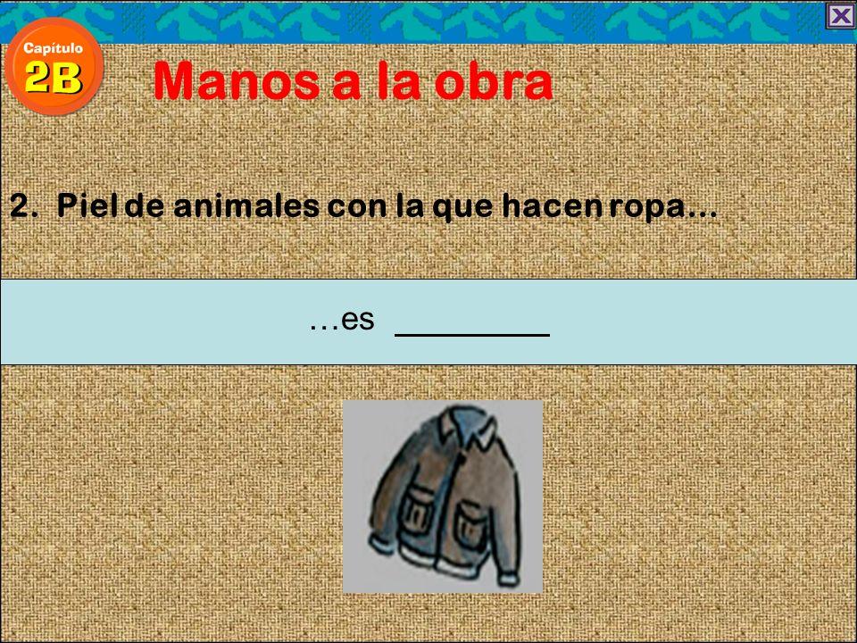 2. Piel de animales con la que hacen ropa… Manos a la obra …es