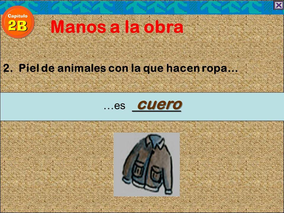 2. Piel de animales con la que hacen ropa… Manos a la obra cuero …es cuero