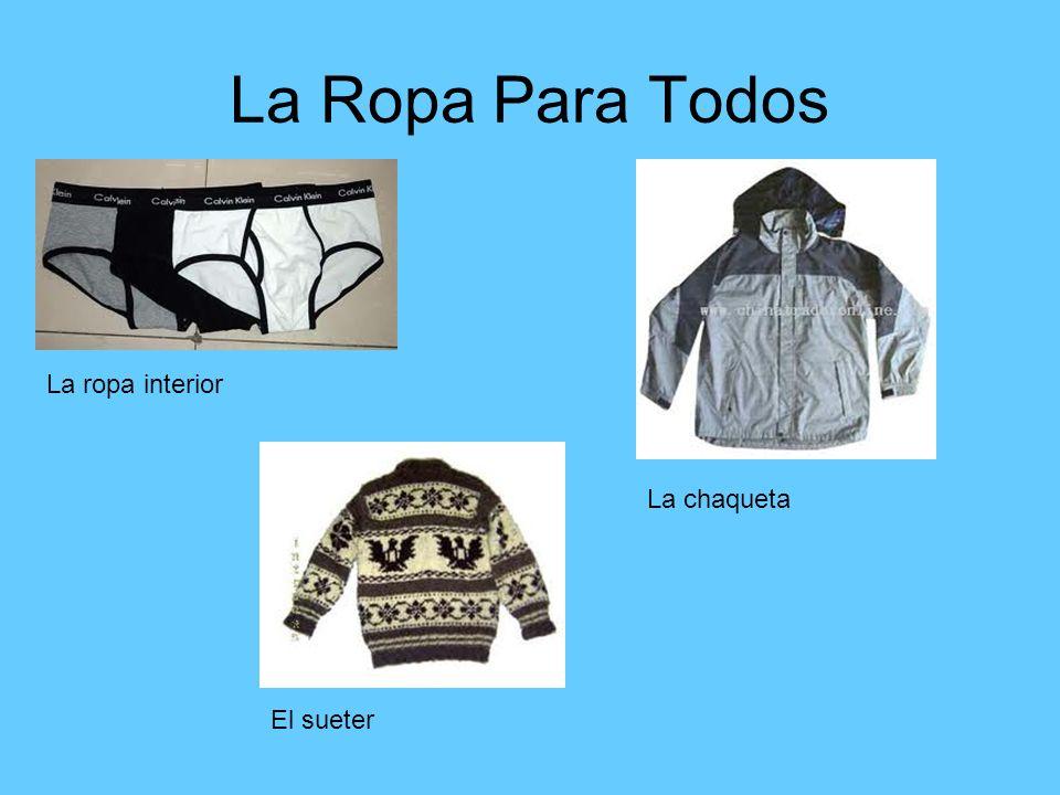 La Ropa Para Todos La ropa interior La chaqueta El sueter