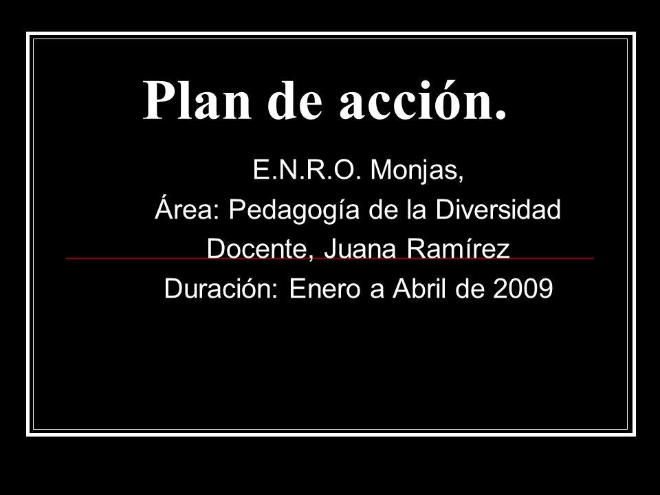Plan de acción. E.N.R.O.