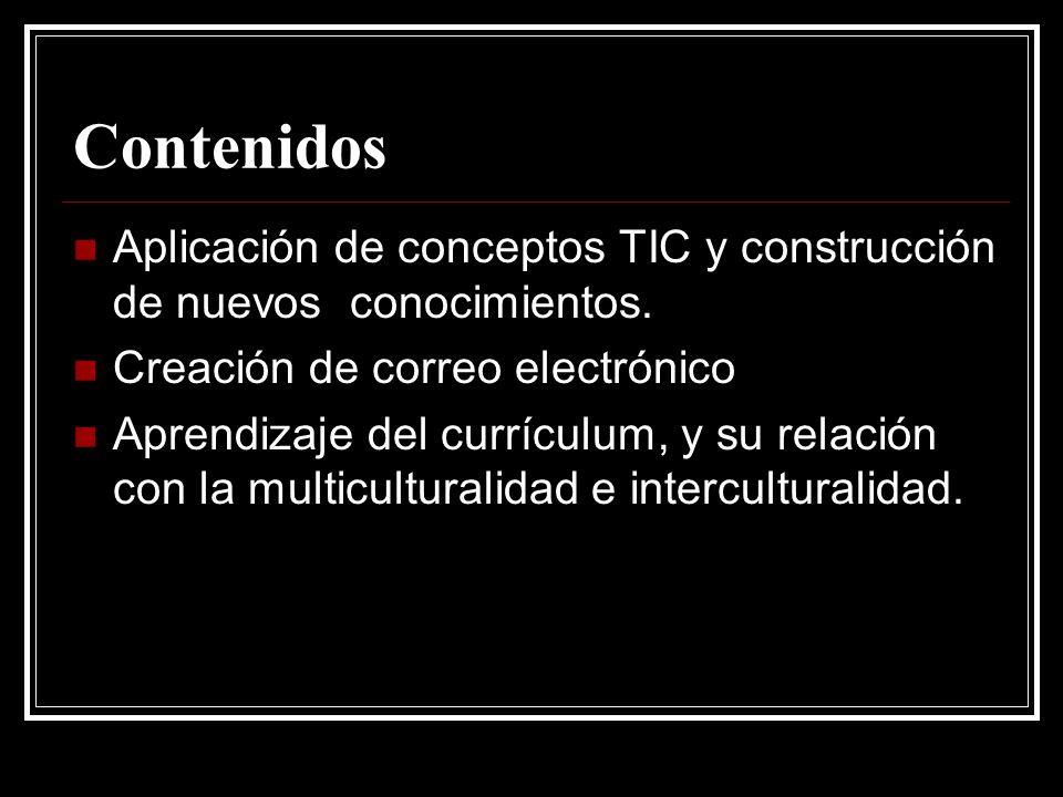 Contenidos Aplicación de conceptos TIC y construcción de nuevos conocimientos.