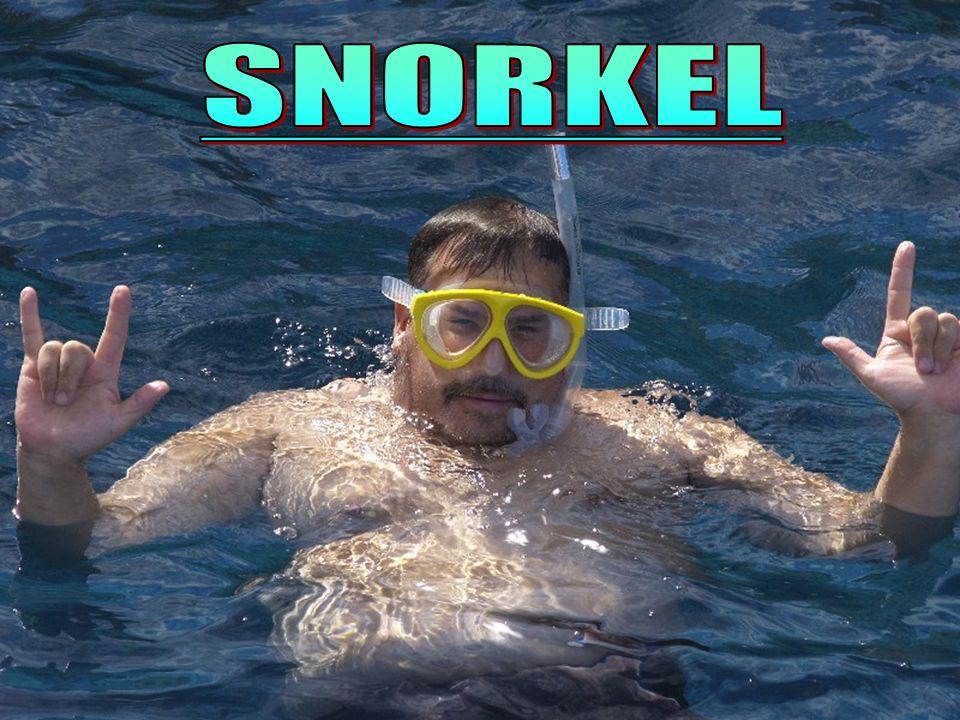 FUNDAMENTOS FÍSICOS Los tres pilares de la física del buceo (Snorkel y Apnea) son el principio de Arquímedes, la presión y las leyes de los gases.