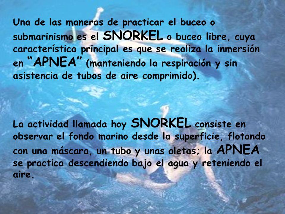 Una de las maneras de practicar el buceo o submarinismo es el SNORKEL o buceo libre, cuya característica principal es que se realiza la inmersión en APNEA (manteniendo la respiración y sin asistencia de tubos de aire comprimido).