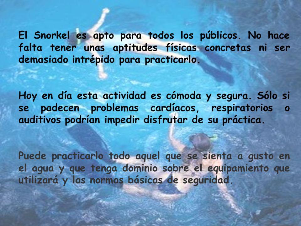 Para el Snorkel no hace falta titulación, puesto que se realiza a pulmón libre, es decir no se lleva bombona de oxígeno.