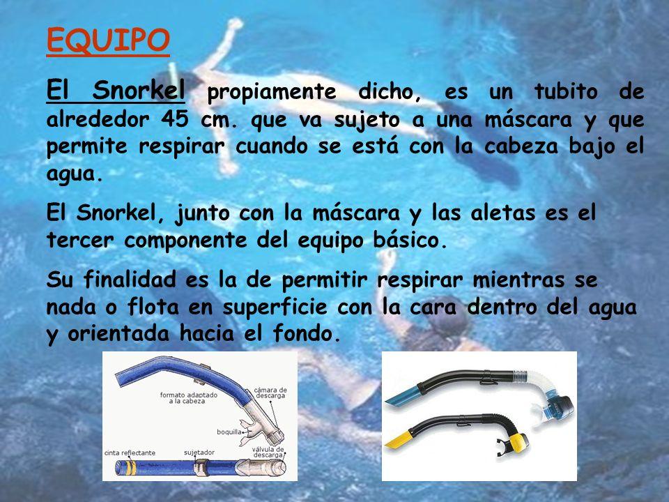 EQUIPO El Snorkel propiamente dicho, es un tubito de alrededor 45 cm.