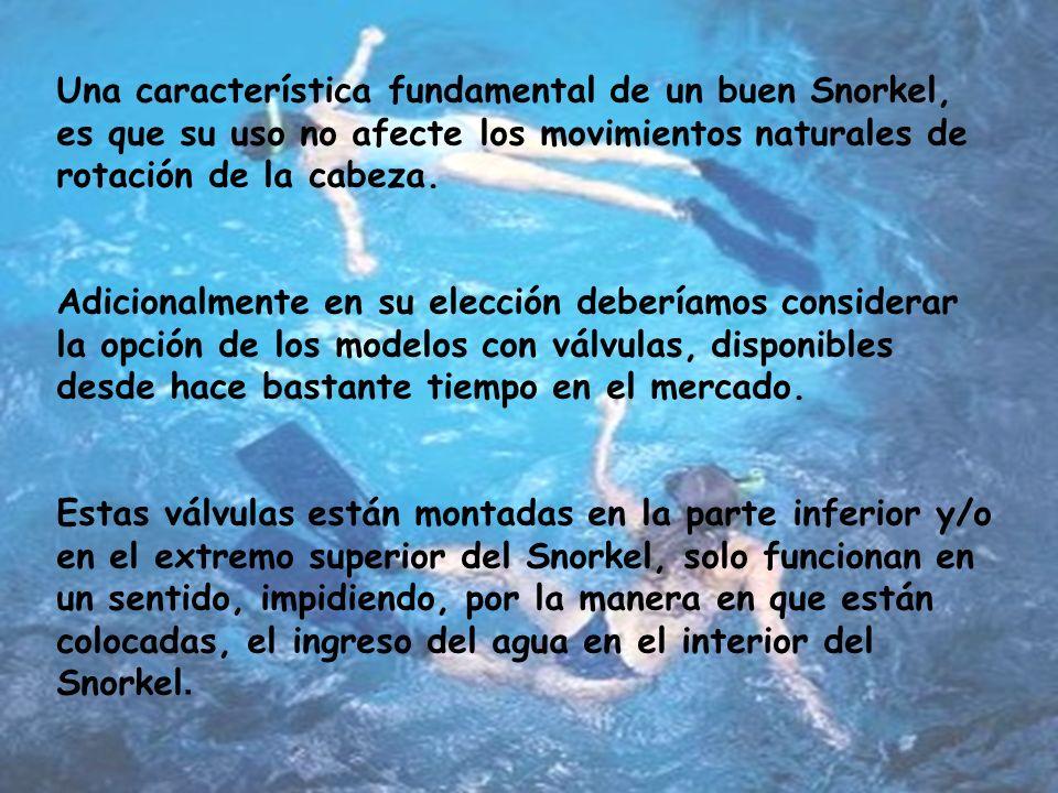 Una característica fundamental de un buen Snorkel, es que su uso no afecte los movimientos naturales de rotación de la cabeza.