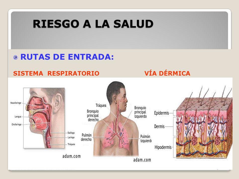 CLASES DE QUIMICOS INCOMPATIBLES