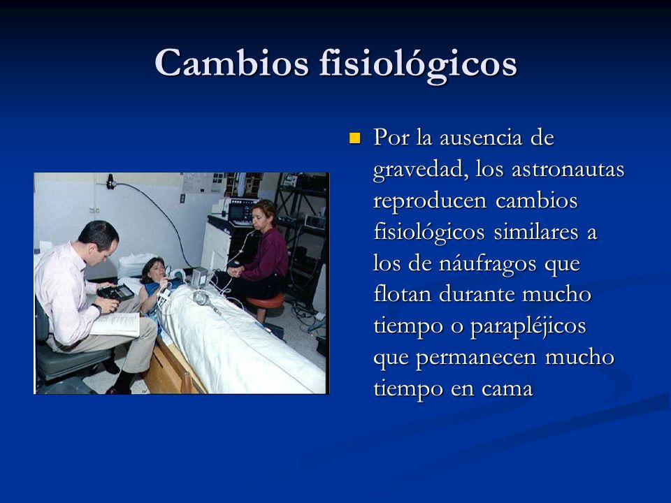 Cambios fisiológicos Por la ausencia de gravedad, los astronautas reproducen cambios fisiológicos similares a los de náufragos que flotan durante much