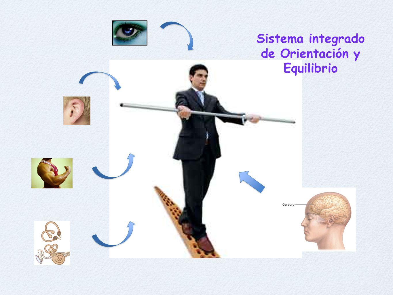 Sistema integrado de Orientación y Equilibrio