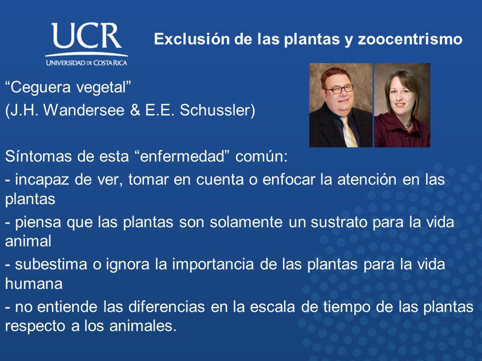 Exclusión de las plantas y zoocentrismo Ceguera vegetal (J.H. Wandersee & E.E. Schussler) Síntomas de esta enfermedad común: - incapaz de ver, tomar e