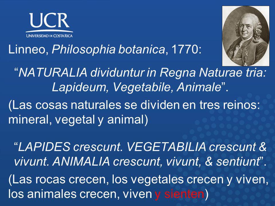 Linneo, Philosophia botanica, 1770: NATURALIA dividuntur in Regna Naturae tria: Lapideum, Vegetabile, Animale. (Las cosas naturales se dividen en tres