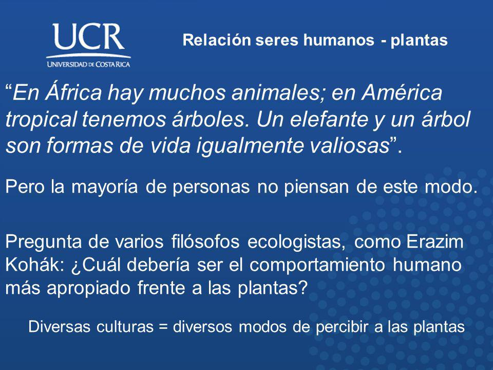 Relación seres humanos - plantas En África hay muchos animales; en América tropical tenemos árboles. Un elefante y un árbol son formas de vida igualme