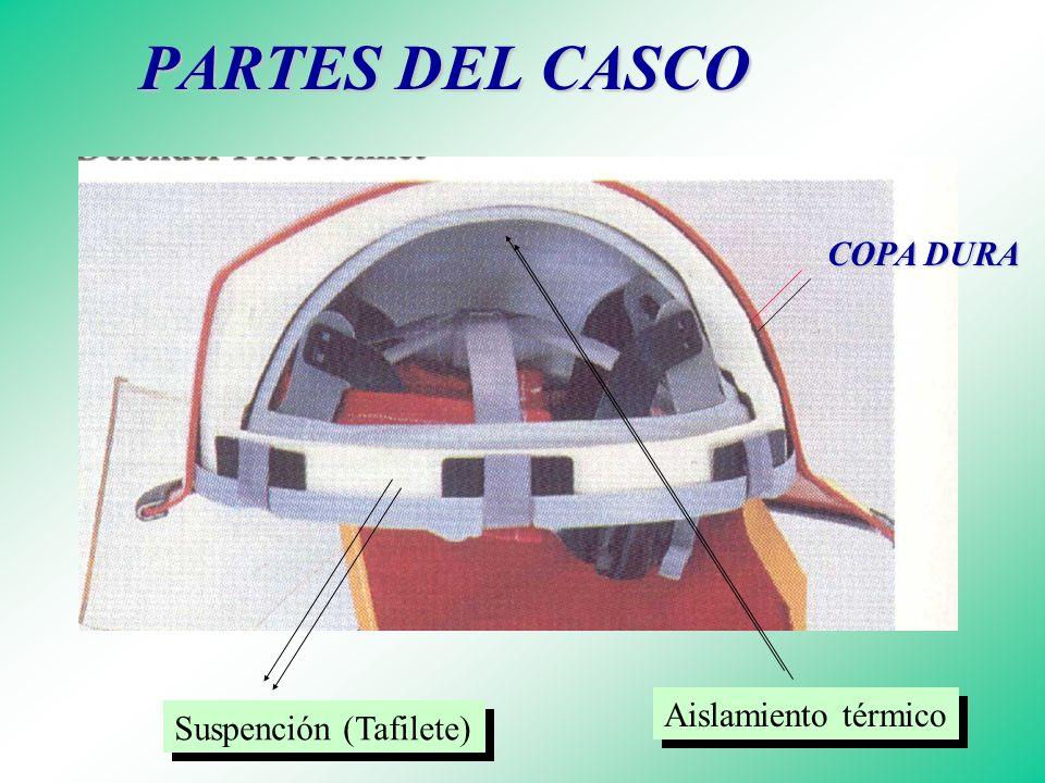 Variedades en Cascos