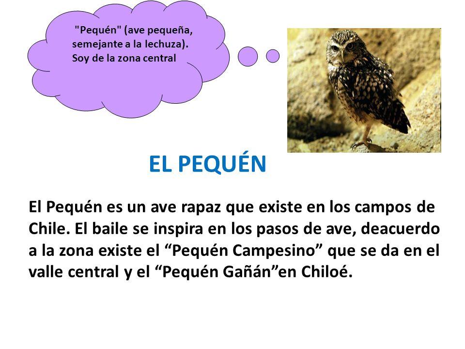 El Pequén es un ave rapaz que existe en los campos de Chile. El baile se inspira en los pasos de ave, deacuerdo a la zona existe el Pequén Campesino q