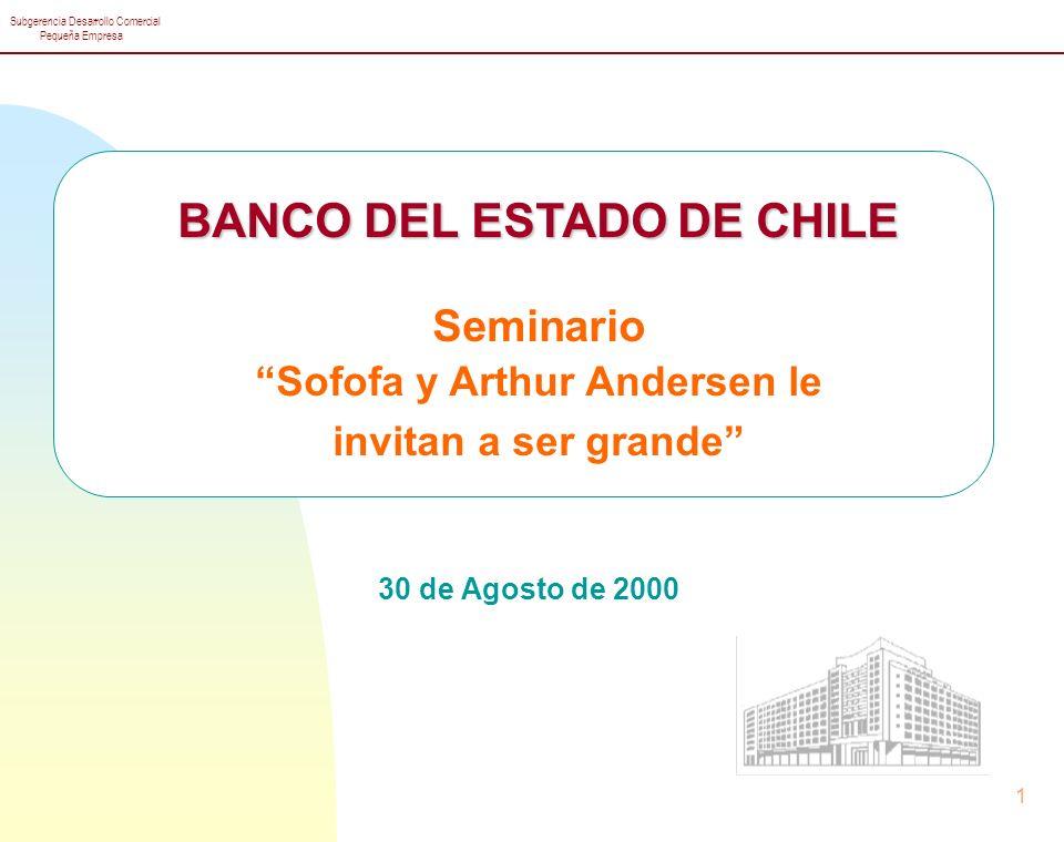 Subgerencia Desarrollo Comercial Pequeña Empresa 1 BANCO DEL ESTADO DE CHILE Seminario Sofofa y Arthur Andersen le invitan a ser grande 30 de Agosto de 2000
