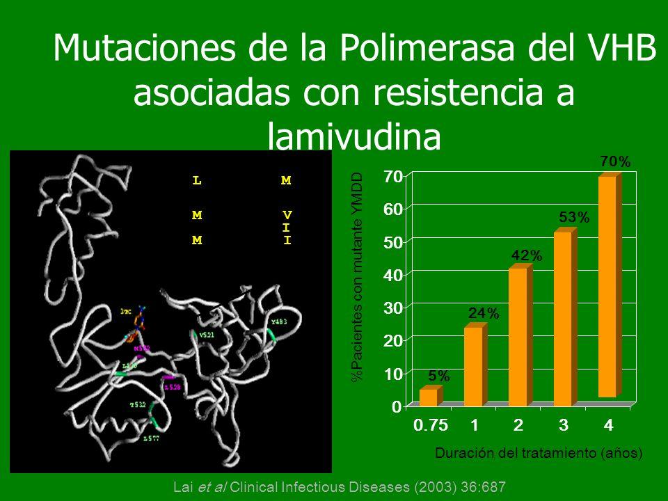 Mutaciones de la Polimerasa del VHB asociadas con resistencia a lamivudina 0 10 20 30 40 50 60 70 0.751234 HBV-DNA polimerasa...FLLAQ......YMDD. codon