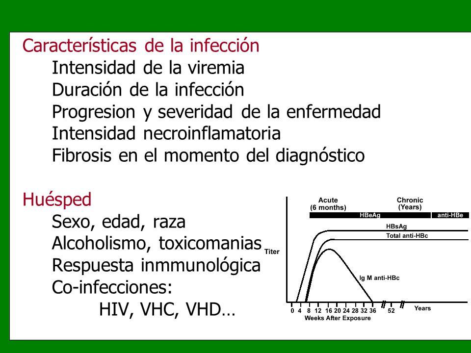 Características de la infección Intensidad de la viremia Duración de la infección Progresion y severidad de la enfermedad Intensidad necroinflamatoria