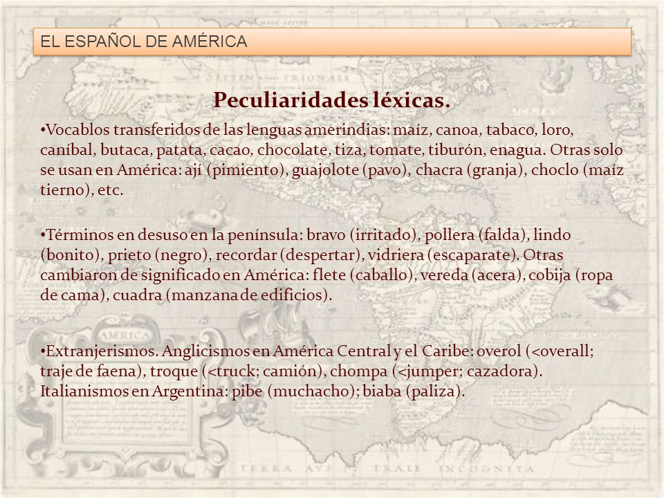 EL ESPAÑOL DE AMÉRICA Peculiaridades léxicas. Vocablos transferidos de las lenguas amerindias: maíz, canoa, tabaco, loro, caníbal, butaca, patata, cac