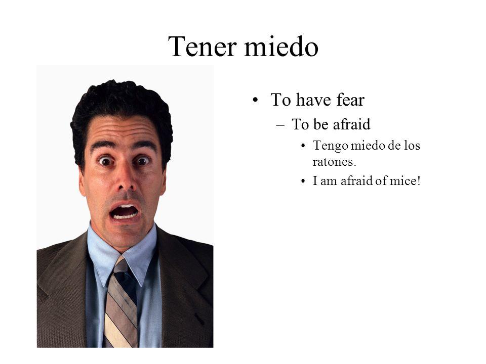 Tener miedo To have fear –To be afraid Tengo miedo de los ratones. I am afraid of mice!