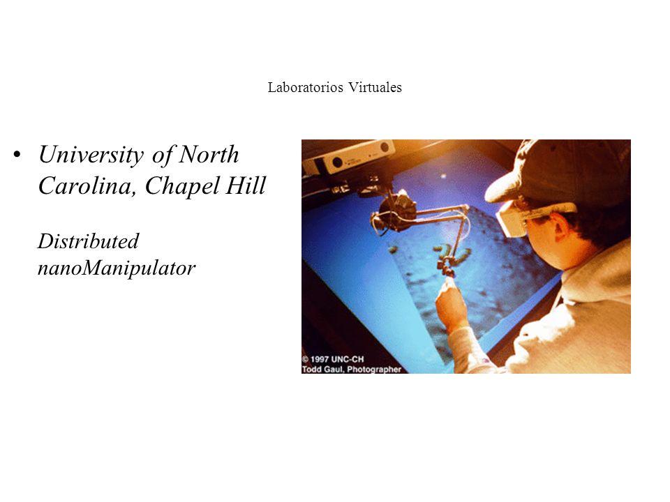 Laboratorios Virtuales Acceso en tiempo real a instrumentos y equipamiento University of Pittsburgh, Pittsburgh Supercomputing Center 3-D Brain Mappin