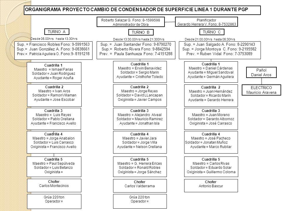 ORGANIGRAMA PROYECTO CAMBIO DE CONDENSADOR DE SUPERFICIE LINEA 1 DURANTE PGP Roberto Salazar G.
