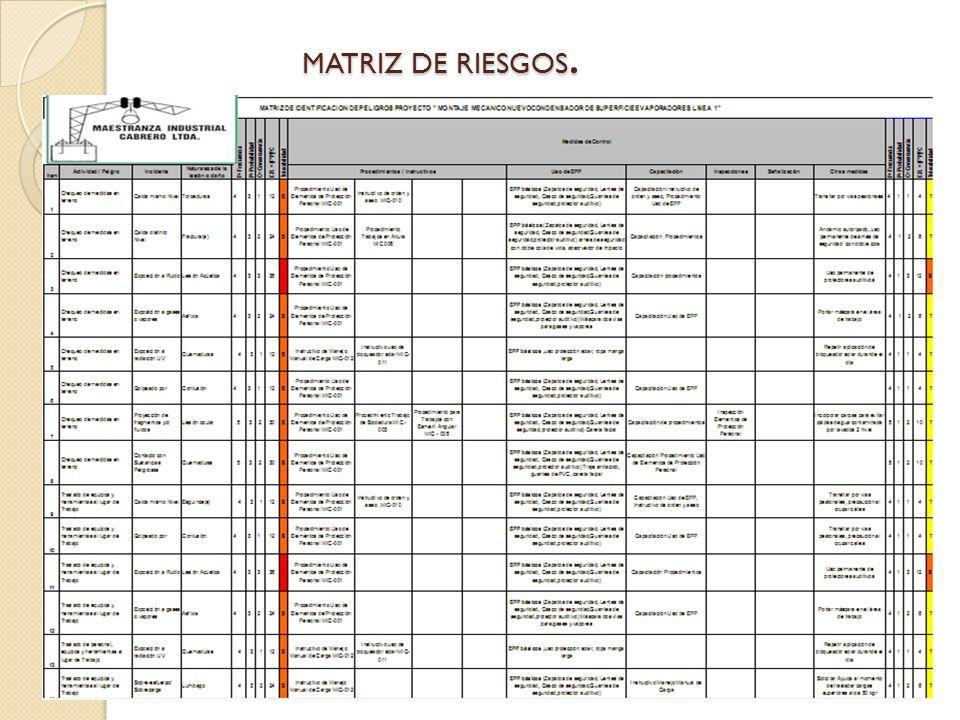MATRIZ DE RIESGOS.