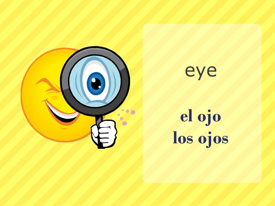 el ojo los ojos eye