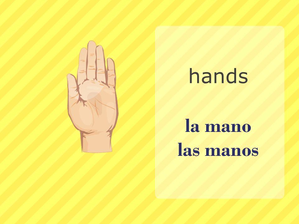 la mano las manos hands