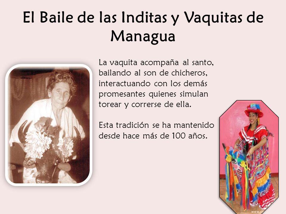El Baile de las Inditas y Vaquitas de Managua La vaquita acompaña al santo, bailando al son de chicheros, interactuando con los demás promesantes quie