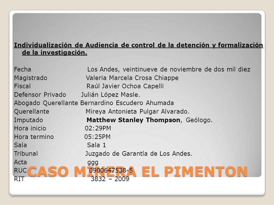 CASO MINERA EL PIMENTON Individualización de Audiencia de control de la detención y formalización de la investigación. Fecha Los Andes, veintinueve de