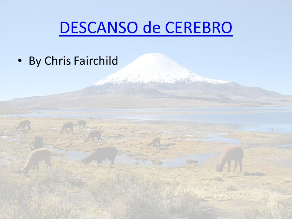 DESCANSO de CEREBRO By Chris Fairchild