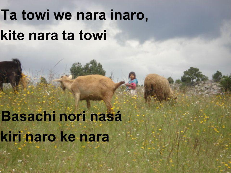 Ta towi we nara inaro, kite nara ta towi Basachi nori nasá kiri naro ke nara