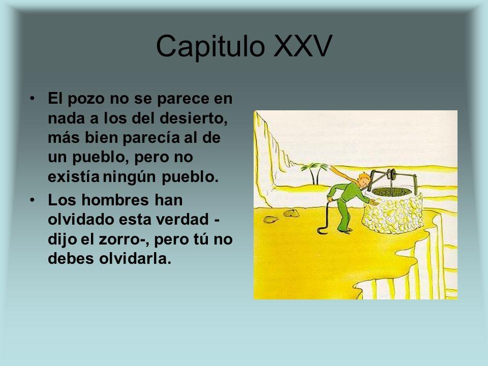 Capitulo XXV El pozo no se parece en nada a los del desierto, más bien parecía al de un pueblo, pero no existía ningún pueblo. Los hombres han olvidad
