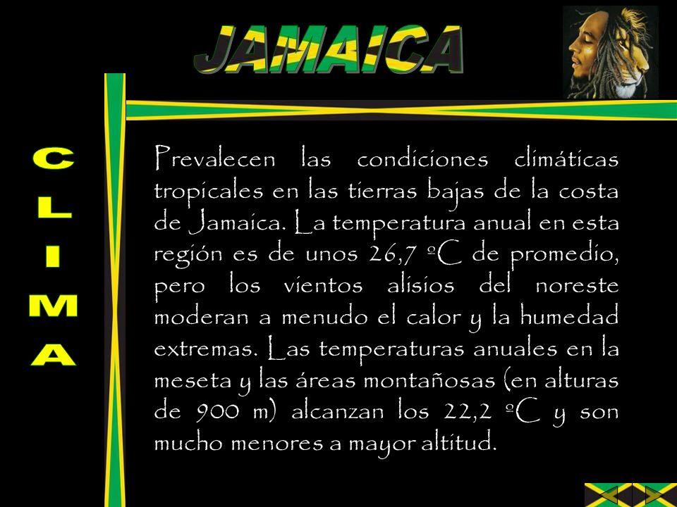 Prevalecen las condiciones climáticas tropicales en las tierras bajas de la costa de Jamaica. La temperatura anual en esta región es de unos 26,7 ºC d