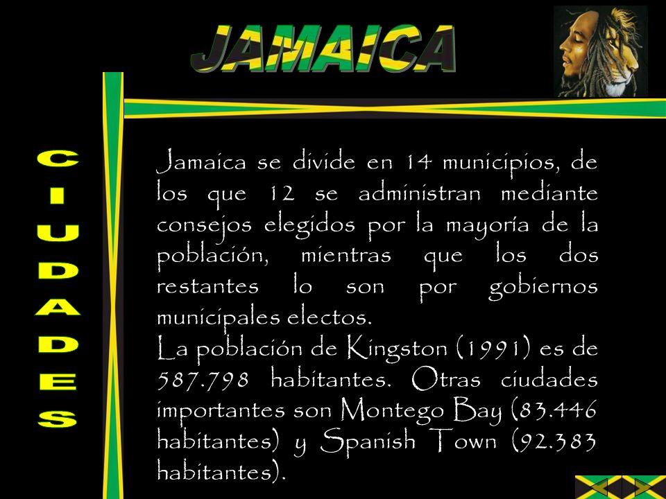 Jamaica se divide en 14 municipios, de los que 12 se administran mediante consejos elegidos por la mayoría de la población, mientras que los dos resta
