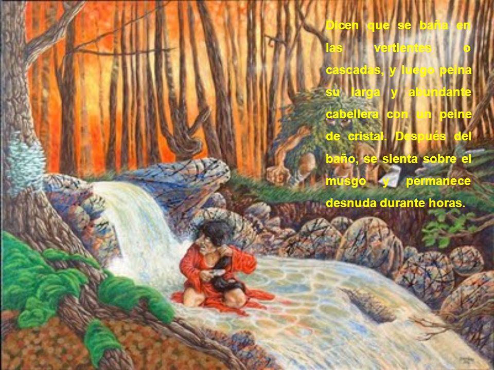 Se le puede ver danzando sobre la débil alfombra, de los pantanos, sin tenor a que, en cualquier instante se rompa y la trague