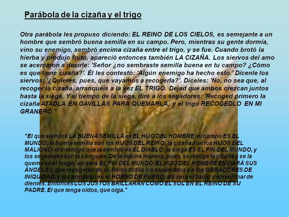 Parábola de la cizaña y el trigo Otra parábola les propuso diciendo: EL REINO DE LOS CIELOS, es semejante a un hombre que sembró buena semilla en su c